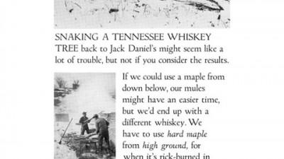 Jack Daniel's - 4
