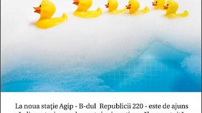 Agip - Ducks
