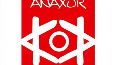 Anaxor Communication - Identitate vizuala