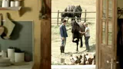 ASG - Hola Soy Rumano - the farm