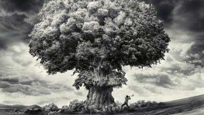 Greenpeace - Bomb