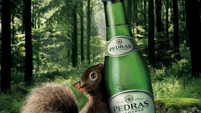 Pedras Water - Made and Brought to you by nature - Squirrel