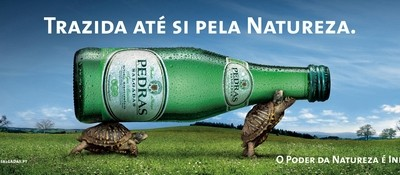 Pedras Water - Made and Brought to you by nature - Turtle