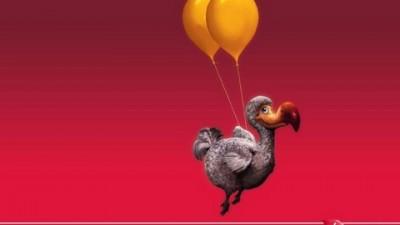 Virgin Atlantic International - Dodo