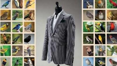 Harvey Nichols - Birds
