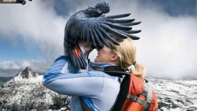 Olympus Binoculars - Cockatoo