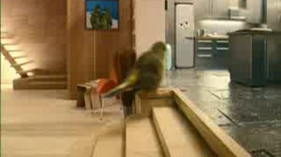 Robinsons - Birdhouse