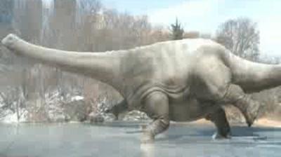 Denver Museum - Dinosaur