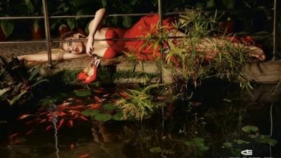 Luciano Carvari - Goldfish