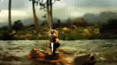 Ford Everest - Bear