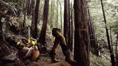 Cadbury's Ulta Perk - Lumberjack
