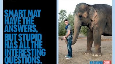 Diesel - Be stupid - Elephant (II)