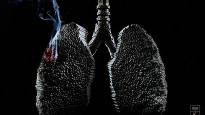 ADESF Smoking Awareness - Lungs