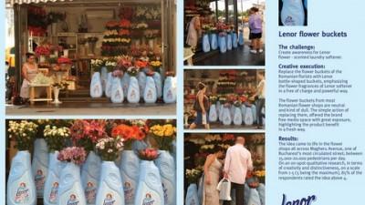 Lenor - Flower Buckets