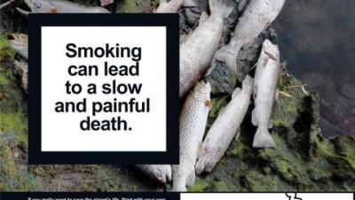 National No Smoking Day - Fish