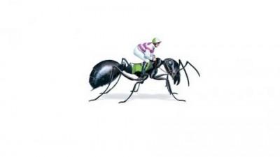 Oakbank Easter Carnivale - Ant