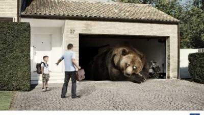 Peugeot Service - Hibernating Bear