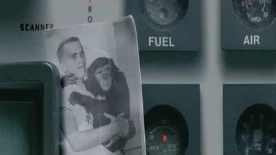 WWF - Monkey