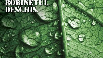 Gradina Botanica - Frunza-verde