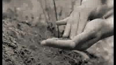 Samburesti - 1900