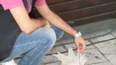 ADfel 2010 - Taft - Ciuful
