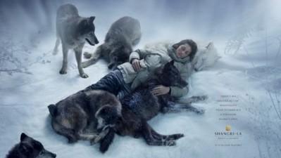 Shangri-La Resorts - Wolf