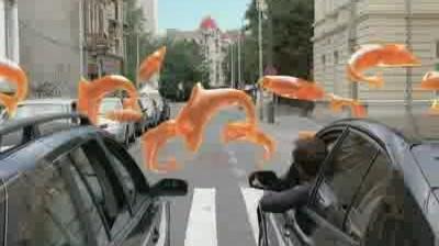 Orange - Surprises (Delfin)