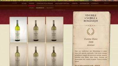 Budureasca - website (I)