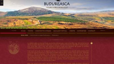Budureasca - website (II)