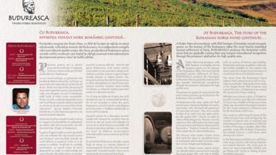 Budureasca - website (III)