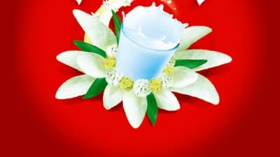 Raraul - Floarea laptelui