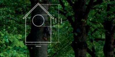 Prima campanie de promovare realizata de DDB Bucuresti pentru cel mai mare producator de placi de lemn, Kronospan