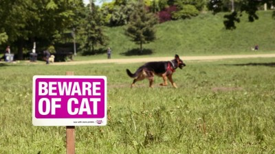 Whiskas - Beware of cat sign