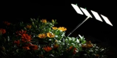 Ecranul luminos al telefonului SONY Xperia arc poate face sa creasca o floare. Asa, si?