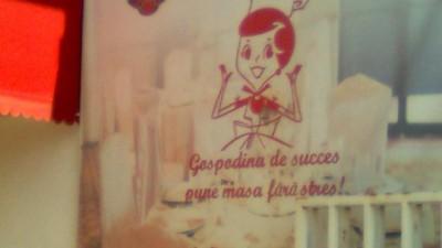 Bucatarie Romaneasca - Gospodina de succes