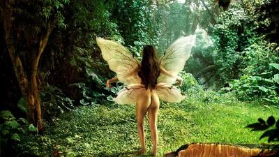 Ferrino Sleeping Bags - Butterfly