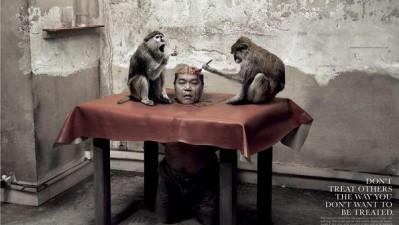 Humans for Animals - Monkeys