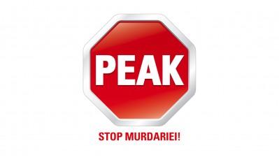 Peak - Logo