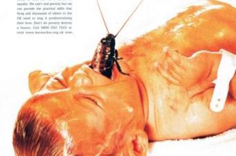 Barnardo's - Bug