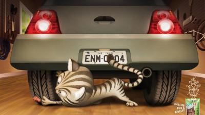Gatos - Car