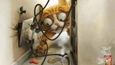 Gatos - Refrigerator