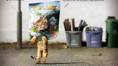 Lucky Cat Club - Tom
