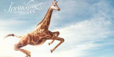 Printuri cu girafe carora e greu sa le ajungi la nas