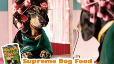 Supreme Dog Food - Bigoudis