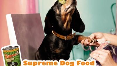 Supreme Dog Food - Mask