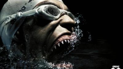 Arena - Shark