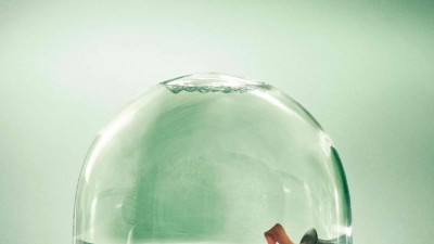 Greenpeace - Snow globe