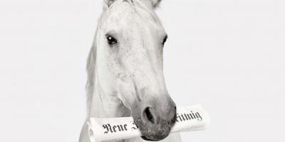 Targul de cai