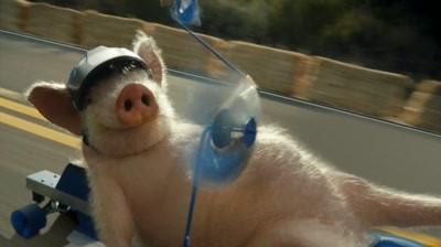 Geico - Maxwell the Piggy