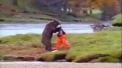 John West Salmon - Bear fight